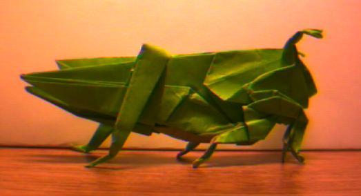 An Origami Grasshopper